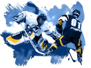 2008-09 WCRHL season
